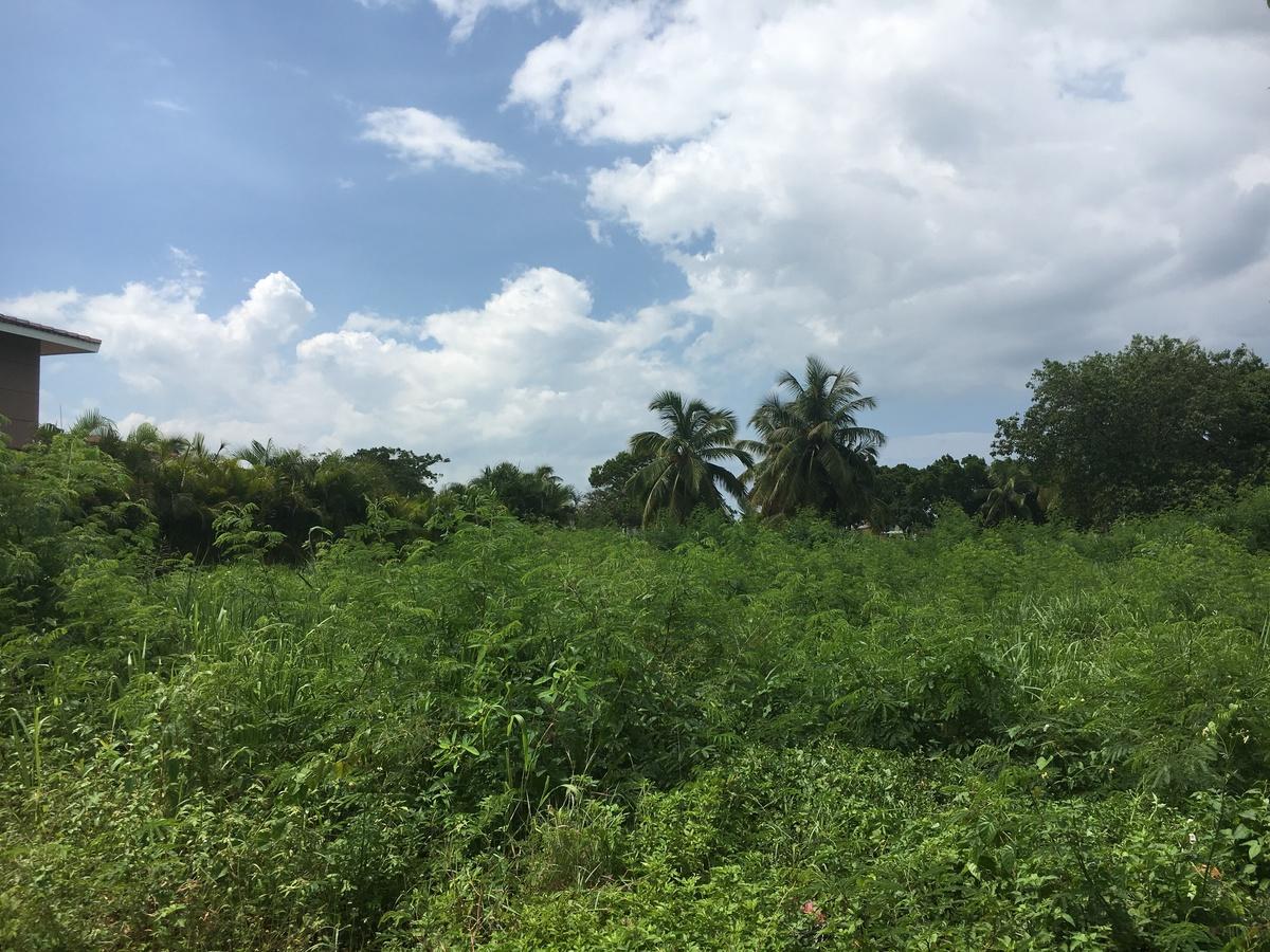 Espectacular solar en Cocotal para construir villa